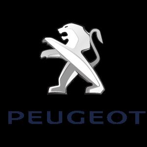 Vendo auto Peugeot