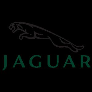 Vendo auto Jaguar